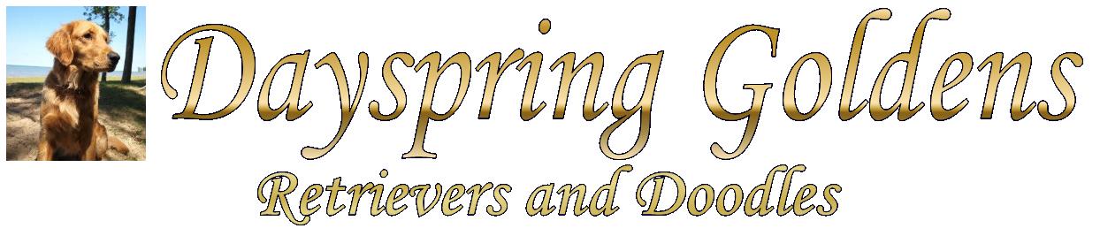 Dayspring Goldens, Retrievers and Doodles